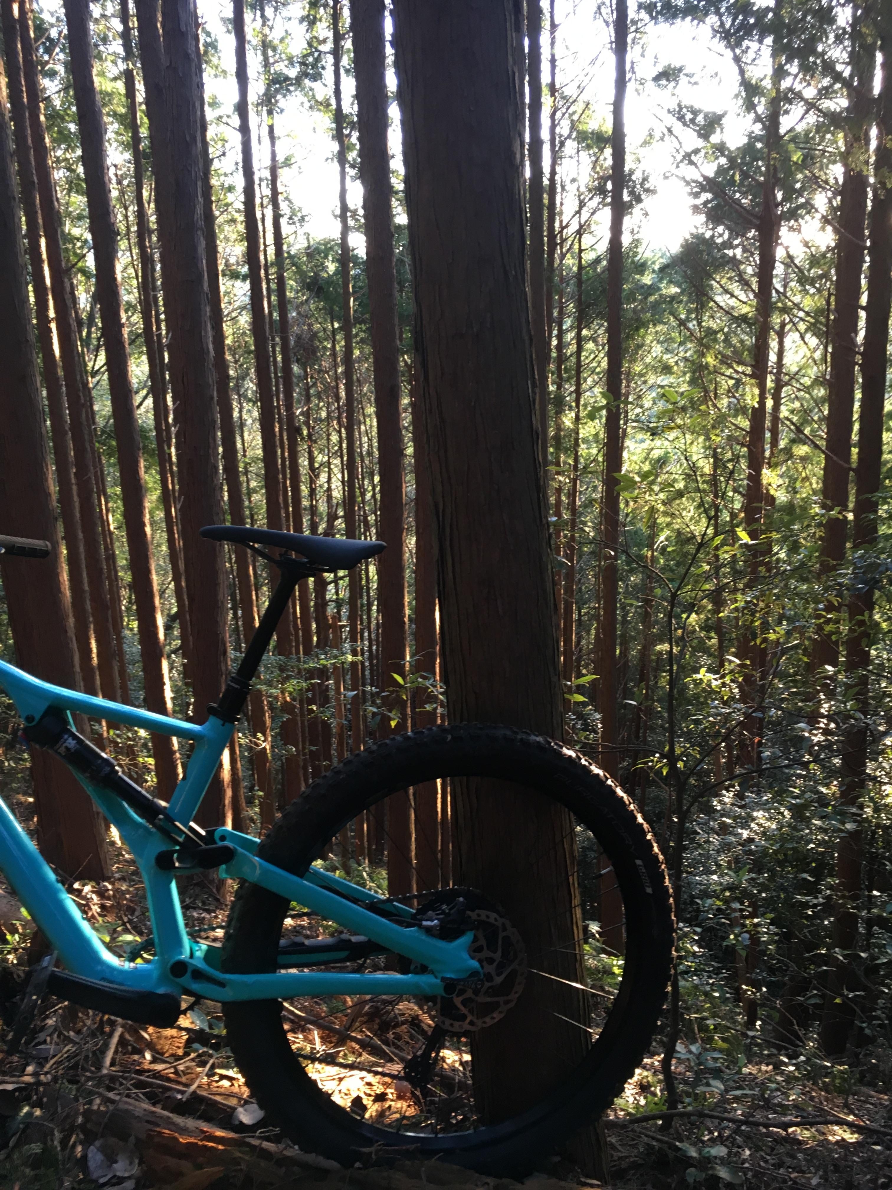 朝一 10月の山サイクリング!